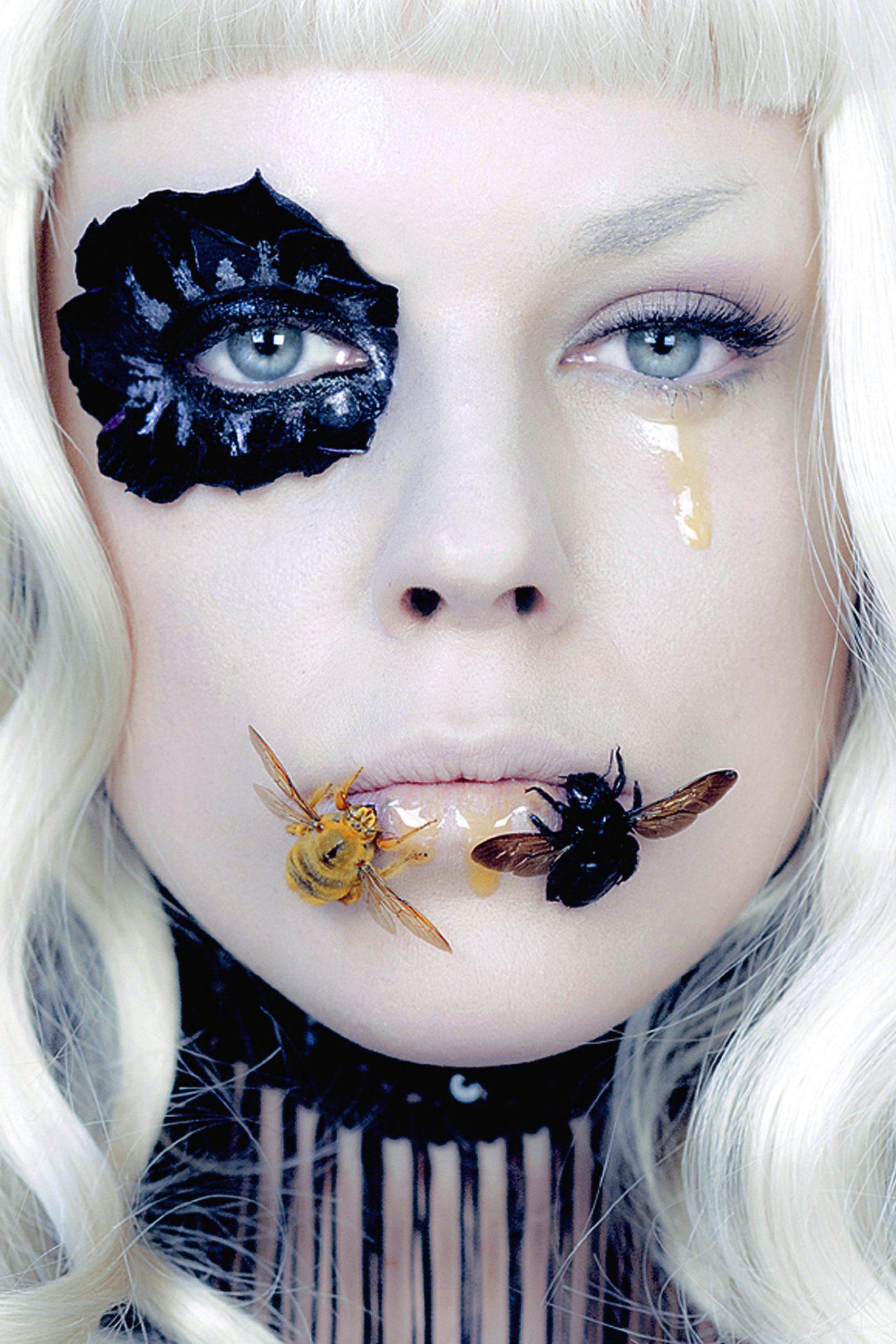De Vanitate Insecta